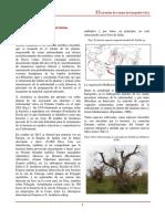 xylella_y_vegetacion.pdf.pdf