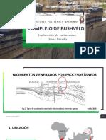 Complejo de Bushveld