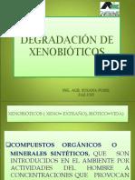 1674588467.Presentación XENOBIOTICOS 2012.ppt