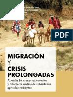 migración y crisis prolongadas.pdf