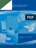 aspectos_basicos_del_presupuesto.pdf