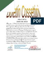 Boletín Cossettini Nº 6