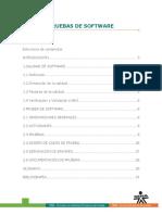 pruebas del software.docx