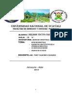 D° INDUSTRIAL MONOGRAFICO (2).docx