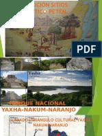 Parques y Reservas [Autoguardado]