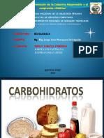 expo_de_carbohidratos.pptx