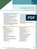 15 - Tracto Genitourinario Fetal