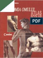 a Atlas Scolar Anatomia Omului Corint