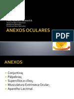 329777073-Anexos-Oculares.pptx