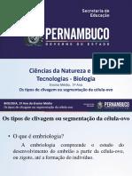 Os Tipos de Clivagem Ou Segmentação Da Célula-ovo (1)