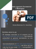 miologiaanatoyfisio (1)