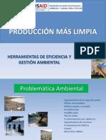 Produccion Mas Limpia 2010
