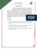 EL LIMITE LIQUIDO INF.docx