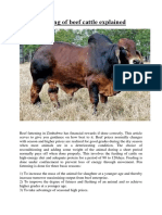 Pen Fattenning of Beef Cattle Explained
