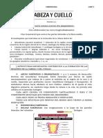 Cabeza_y_cuello_embriologia.docx