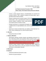 2da y 3era Guía de Práctica de Inventario Forestal