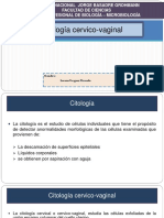 Citologia Cervico Vaginal