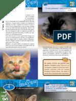 (eBook - ITA - ANIMALI) I Gatti, l'Alimentazione (Bayer) (PDF)