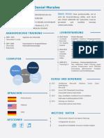 ejemplo-curriculum-vitae-profesional-aleman-780-pdf.pdf