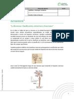 s4-actividad 2.pdf