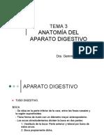 3. Anatomia Del Aparato Digestivo