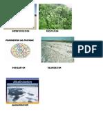 desertification.docx