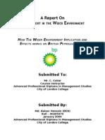 Report- British Petroleum (Management in the Wider Environment)
