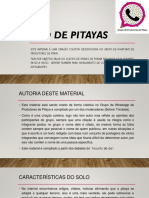 Cultivo de Pitayas