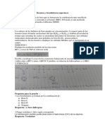 Boranos y borohidruros superiores.docx