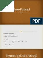 Duelo Perinatal