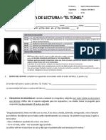 evaluación libro El Túnel