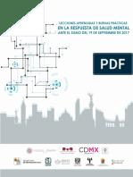 ACCIONES_EN_EL_MARCO_DE_LA_SALUD_MENTAL.pdf
