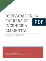 DERIVDADA EN ING.AMBIENTAL.docx