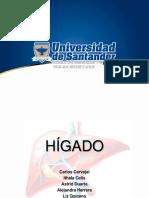 Anatomia-HIGADO (1).pptx