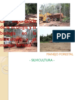 Clase Manejo45
