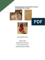 Diagnostico y Zonificacion Arqueologica Del Municipio de Maicao, Departamento de La Guajira.