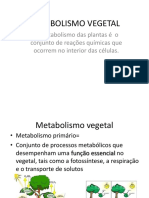 biossintese e metabolismo