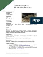 Fichas Descriptivas de Algunas Especies