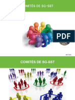 presentación comite sg sst