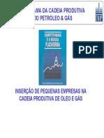 Cadeia Produtiva Do Petroleo e G-s