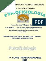 Psicofisiologia- Pares craneales