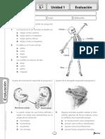 Evaluacion+ciencias+5