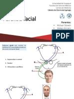 Paralisis Facial ORL