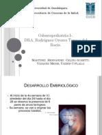 Erupción Dentaria final.pptx