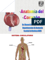 Anatomia de corazón