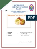 MACERADO-DE-CAMU-CAMU.docx