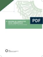 11_Conflictos CIES.pdf