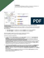 9. immunità e reazioni di ipersensibilità