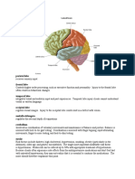 U World Neuro.docx (1).doc