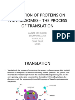 The process of translation